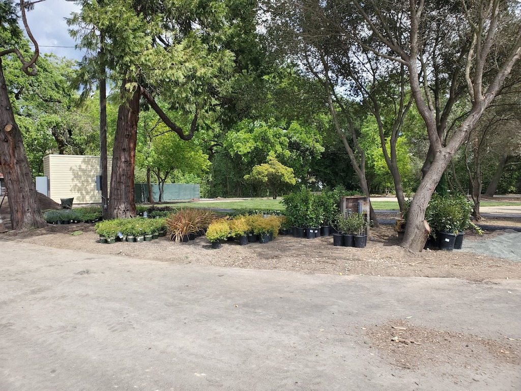 Bell Wine Cellars Remodel Renovation Commercial Construction Companies Near Me General Contractor Napa Winery Vineyard Landscaping Plants Outdoor Area